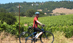 Noyes Bike