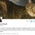 Kristyn Brandi Twitter Account